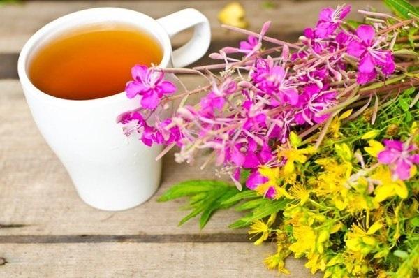 Чашка заваренного иван-чая